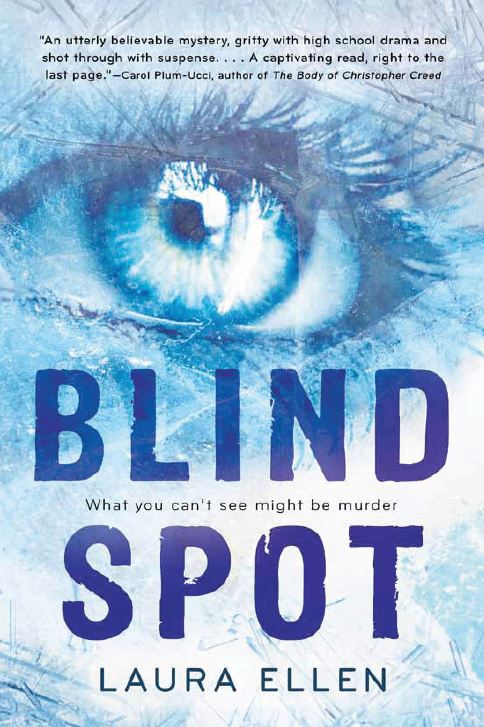 Paperback Edition Of Blind Spot By Laura Ellen Laura Ellen