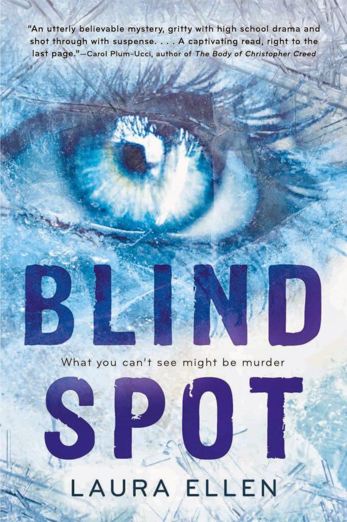 Blind Spot in Paperback